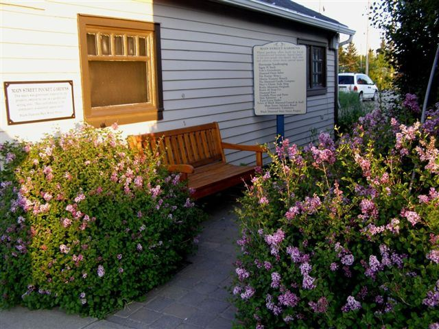 A Pocket Garden in Downtown Black Diamond, AB